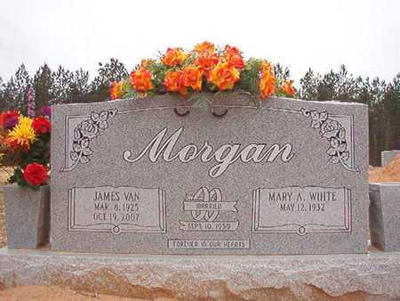 MORGAN, JAMES VAN - Ouachita County, Arkansas   JAMES VAN MORGAN - Arkansas Gravestone Photos