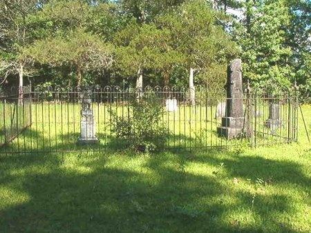 *PURIFOY OVERVIEW,  - Ouachita County, Arkansas |  *PURIFOY OVERVIEW - Arkansas Gravestone Photos