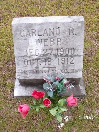 WEBB, GARLAND R - Ouachita County, Arkansas | GARLAND R WEBB - Arkansas Gravestone Photos