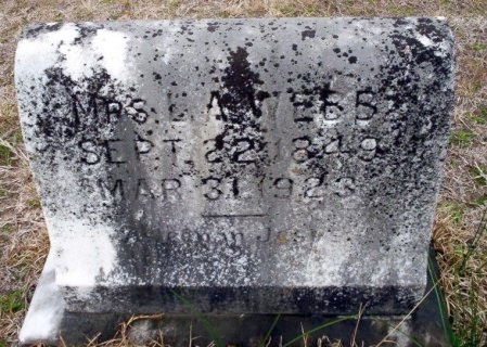 WEBB, LUCINDA ANN - Ouachita County, Arkansas | LUCINDA ANN WEBB - Arkansas Gravestone Photos