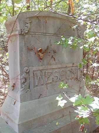 WESSON FAMILY STONE,  - Ouachita County, Arkansas |  WESSON FAMILY STONE - Arkansas Gravestone Photos