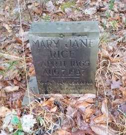 BROWN RICE, MARY JANE - Perry County, Arkansas | MARY JANE BROWN RICE - Arkansas Gravestone Photos