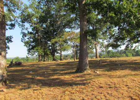 *OVERVIEW, . - Perry County, Arkansas   . *OVERVIEW - Arkansas Gravestone Photos