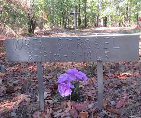 STROBEL, WREN - Perry County, Arkansas | WREN STROBEL - Arkansas Gravestone Photos