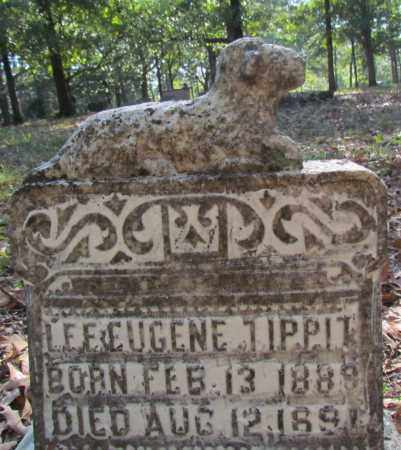 TIPPIT, LEE EUGENE - Perry County, Arkansas   LEE EUGENE TIPPIT - Arkansas Gravestone Photos