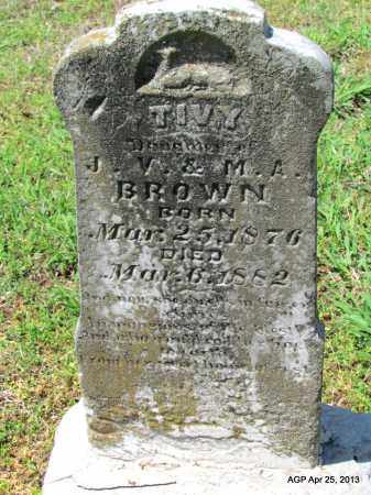 BROWN, TIVY - Phillips County, Arkansas | TIVY BROWN - Arkansas Gravestone Photos