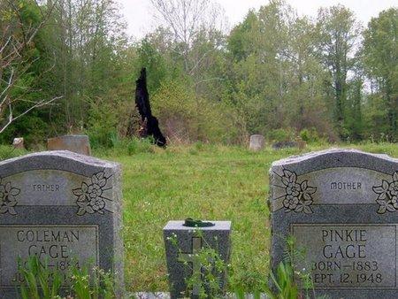 GAGE, PINKIE - Phillips County, Arkansas   PINKIE GAGE - Arkansas Gravestone Photos