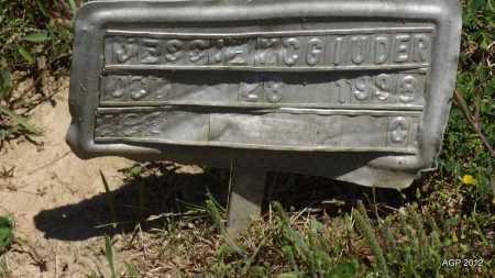 MCGIUDER, JESSIE - Phillips County, Arkansas   JESSIE MCGIUDER - Arkansas Gravestone Photos