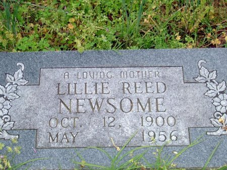 NEWSOME, LILLE - Phillips County, Arkansas | LILLE NEWSOME - Arkansas Gravestone Photos