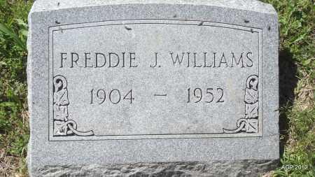 WILLIAMS, FREDDIE J - Phillips County, Arkansas   FREDDIE J WILLIAMS - Arkansas Gravestone Photos