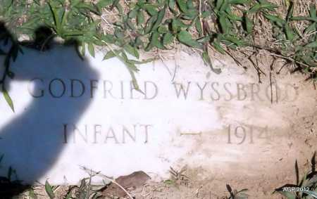 WYSSBROD, GODFRIED - Phillips County, Arkansas | GODFRIED WYSSBROD - Arkansas Gravestone Photos