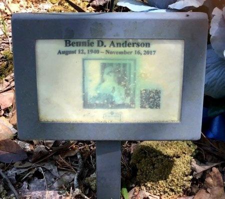 ANDERSON, BENNIE D. - Pike County, Arkansas   BENNIE D. ANDERSON - Arkansas Gravestone Photos