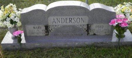 ANDERSON, MARY - Pike County, Arkansas | MARY ANDERSON - Arkansas Gravestone Photos