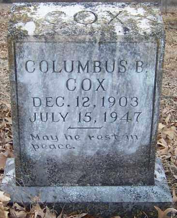 COX, COLUMBUS B - Pike County, Arkansas | COLUMBUS B COX - Arkansas Gravestone Photos
