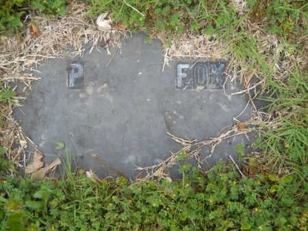 FOX, P - Pike County, Arkansas   P FOX - Arkansas Gravestone Photos