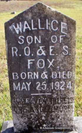 FOX, WALLICE - Pike County, Arkansas   WALLICE FOX - Arkansas Gravestone Photos