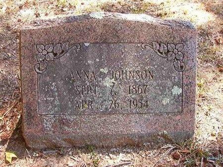 JOHNSON, ANNA - Pike County, Arkansas | ANNA JOHNSON - Arkansas Gravestone Photos