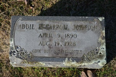 JOHNSON, ADDIE CORNELIA - Pike County, Arkansas | ADDIE CORNELIA JOHNSON - Arkansas Gravestone Photos