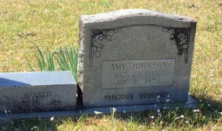 MITCHELL JOHNSON, AMY - Pike County, Arkansas   AMY MITCHELL JOHNSON - Arkansas Gravestone Photos