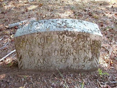 JOHNSON, FRANCES - Pike County, Arkansas | FRANCES JOHNSON - Arkansas Gravestone Photos