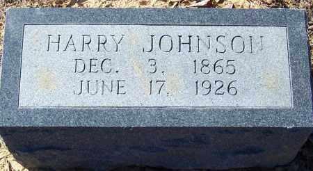 JOHNSON, HARRY - Pike County, Arkansas | HARRY JOHNSON - Arkansas Gravestone Photos