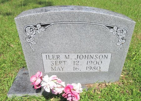 JOHNSON, ILER M. - Pike County, Arkansas | ILER M. JOHNSON - Arkansas Gravestone Photos