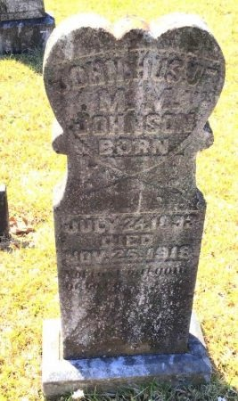 JOHNSON, JOHN - Pike County, Arkansas   JOHN JOHNSON - Arkansas Gravestone Photos