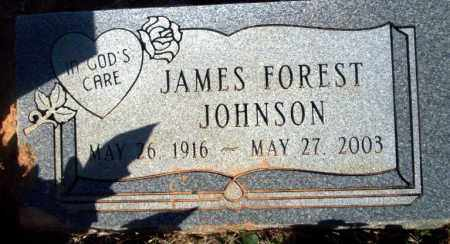 JOHNSON, JAMES FOREST - Pike County, Arkansas | JAMES FOREST JOHNSON - Arkansas Gravestone Photos