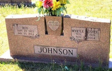 JOHNSON, ROY - Pike County, Arkansas   ROY JOHNSON - Arkansas Gravestone Photos