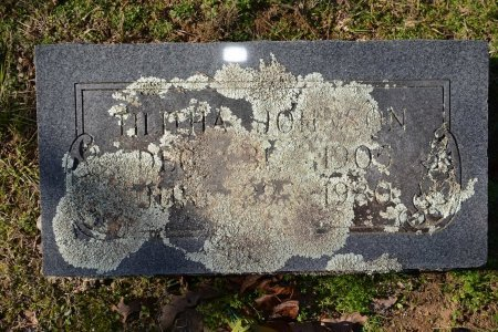 JOHNSON, TALITHA - Pike County, Arkansas | TALITHA JOHNSON - Arkansas Gravestone Photos