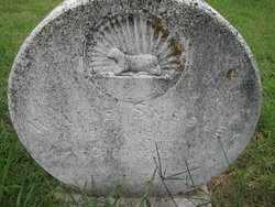 SMEDLEY, JOHN WILLIAM - Pike County, Arkansas | JOHN WILLIAM SMEDLEY - Arkansas Gravestone Photos