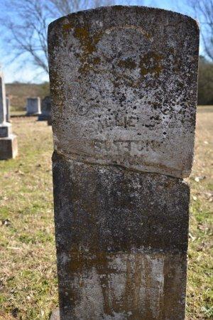 JOHNSON, SALLIE - Pike County, Arkansas | SALLIE JOHNSON - Arkansas Gravestone Photos