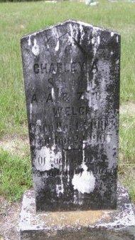WELCH, CHARLEY A. - Pike County, Arkansas | CHARLEY A. WELCH - Arkansas Gravestone Photos