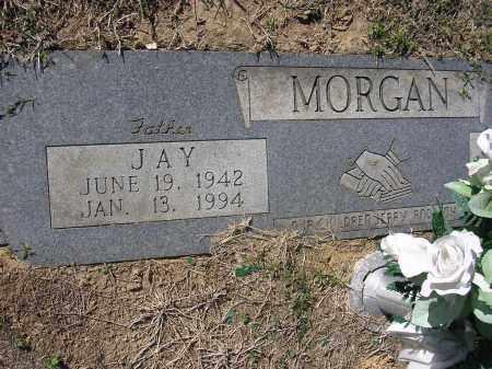MORGAN, JAY - Poinsett County, Arkansas | JAY MORGAN - Arkansas Gravestone Photos