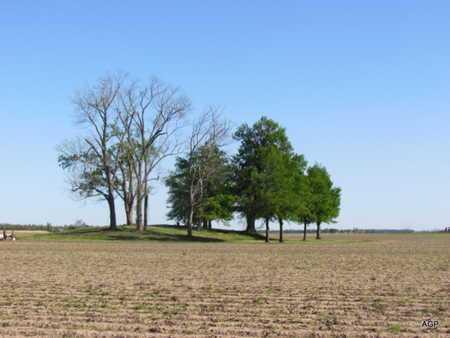 *OVERVIEW,  - Poinsett County, Arkansas |  *OVERVIEW - Arkansas Gravestone Photos