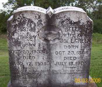 PARKS, SARAH J - Polk County, Arkansas | SARAH J PARKS - Arkansas Gravestone Photos