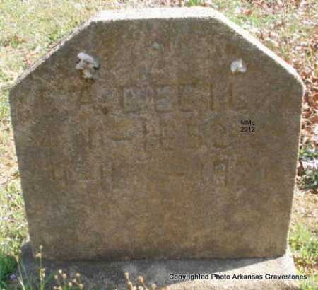 CECIL, E A - Polk County, Arkansas | E A CECIL - Arkansas Gravestone Photos