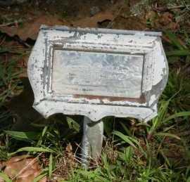 HAMLETT, THOMAS G. - Polk County, Arkansas | THOMAS G. HAMLETT - Arkansas Gravestone Photos