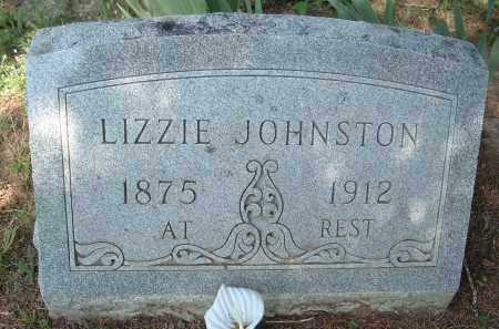 "JOHNSTON, ELMYRA ELIZABETH  ""LIZZIE"" - Polk County, Arkansas 