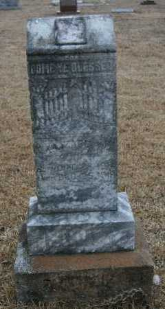 SCOTT, ELIZABETH - Polk County, Arkansas | ELIZABETH SCOTT - Arkansas Gravestone Photos