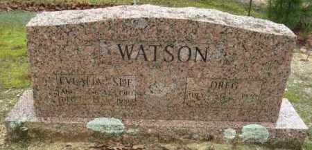 WATSON, EVALIA SUE - Polk County, Arkansas | EVALIA SUE WATSON - Arkansas Gravestone Photos