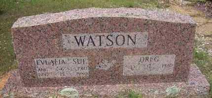 WATSON, EVLALIA SUE - Polk County, Arkansas | EVLALIA SUE WATSON - Arkansas Gravestone Photos