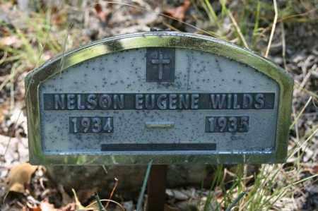 WILDS, NELSON EUGENE - Polk County, Arkansas | NELSON EUGENE WILDS - Arkansas Gravestone Photos