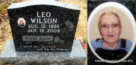 WILSON, LEO - Polk County, Arkansas | LEO WILSON - Arkansas Gravestone Photos