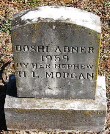 ABNER, DOSHI - Pope County, Arkansas   DOSHI ABNER - Arkansas Gravestone Photos