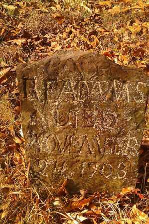 ADAMS, R. F. - Pope County, Arkansas | R. F. ADAMS - Arkansas Gravestone Photos