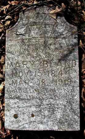 BLAND, MARY - Pope County, Arkansas | MARY BLAND - Arkansas Gravestone Photos