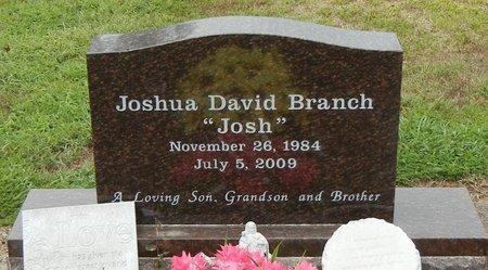 "BRANCH, JOSHUA DAVID ""JOSH"" - Pope County, Arkansas   JOSHUA DAVID ""JOSH"" BRANCH - Arkansas Gravestone Photos"