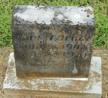 BROWN, PAUL J - Pope County, Arkansas | PAUL J BROWN - Arkansas Gravestone Photos