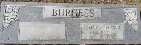 BURGESS, GILFORD JACKSON - Pope County, Arkansas | GILFORD JACKSON BURGESS - Arkansas Gravestone Photos